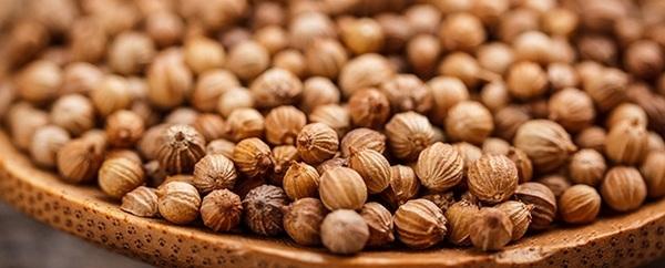 aceite cilantro semillas